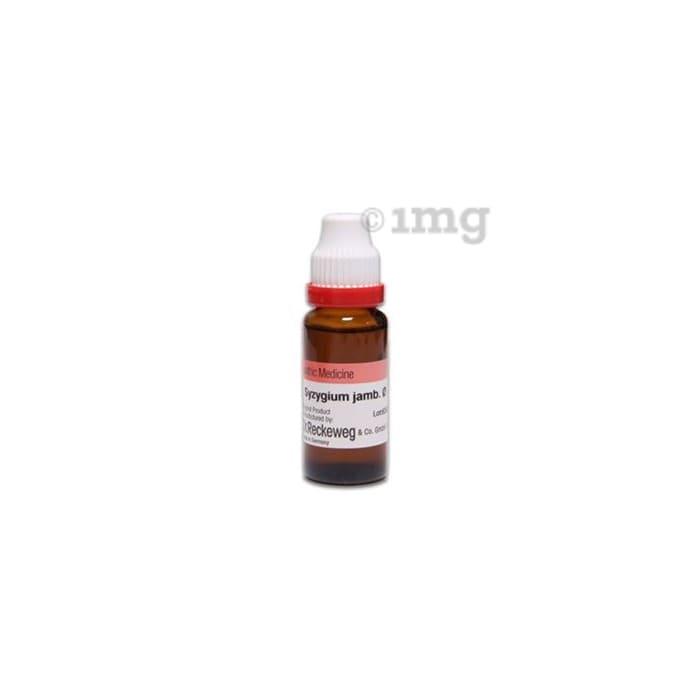 Dr. Reckeweg Syzygium Jamb Mother Tincture Q