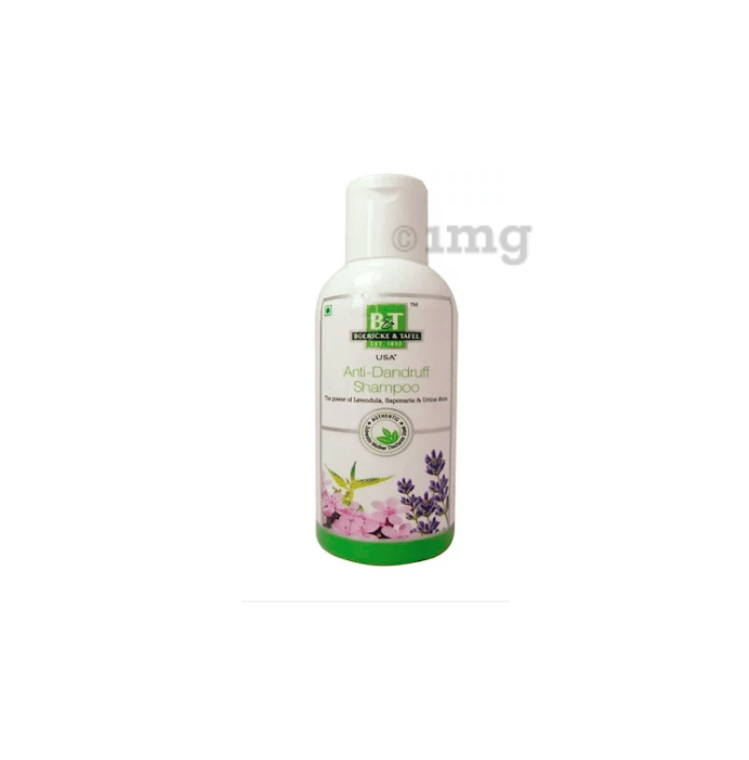 Boericke and Tafel Anti-Dandruff Shampoo