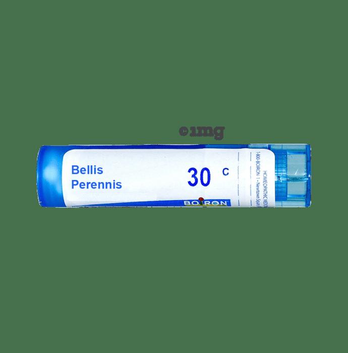 Boiron Bellis Perennis Multi Dose Approx 80 Pellets 30 CH