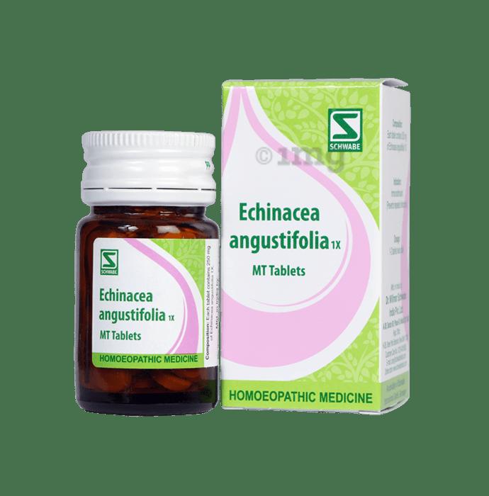 Dr Willmar Schwabe India Echinacea Angustifolia Tablet 1X