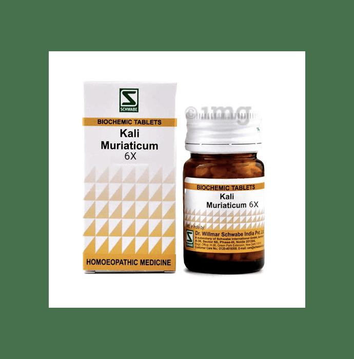 Dr Willmar Schwabe India Kali Muriaticum Biochemic Tablet 6X