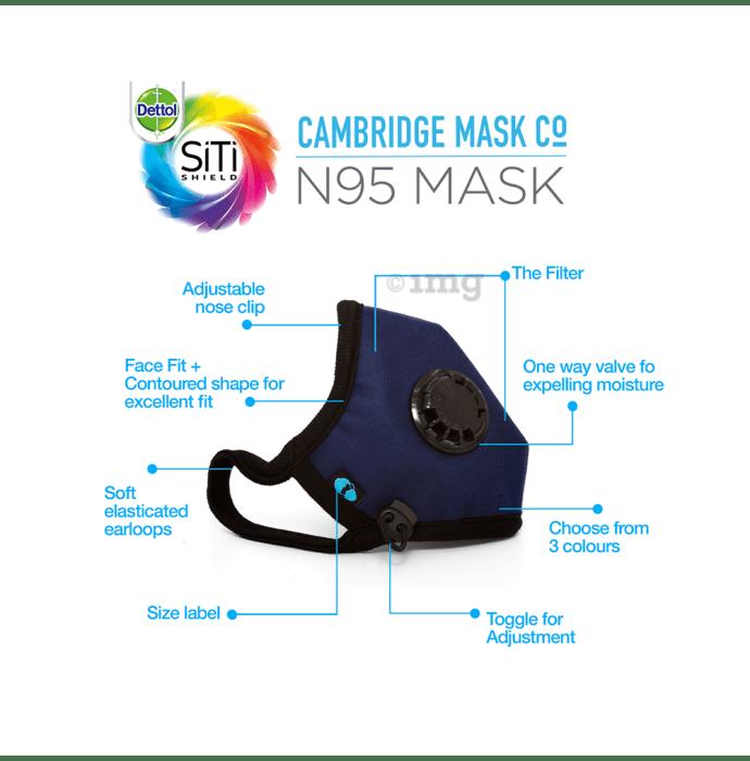 n95 mask dettol