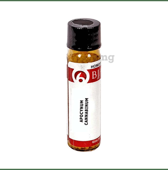 Bjain Apocynum Cannabinum Globules 6 CH