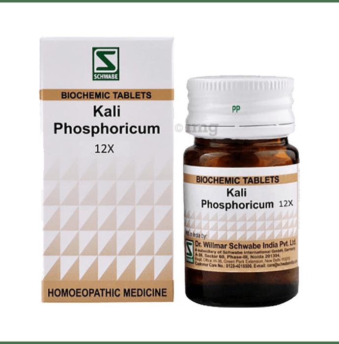Dr Willmar Schwabe India Kali Phosphoricum Biochemic Tablet 12X