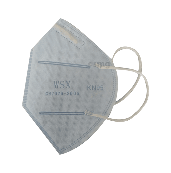 WXS KN95 Anti Pollution Mask Blue