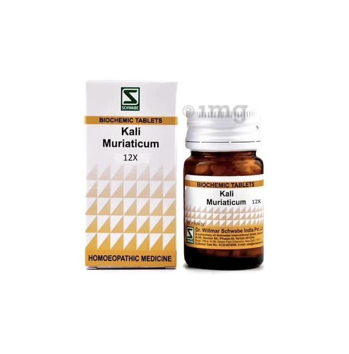 Dr Willmar Schwabe India Kali Muriaticum Biochemic Tablet 12X