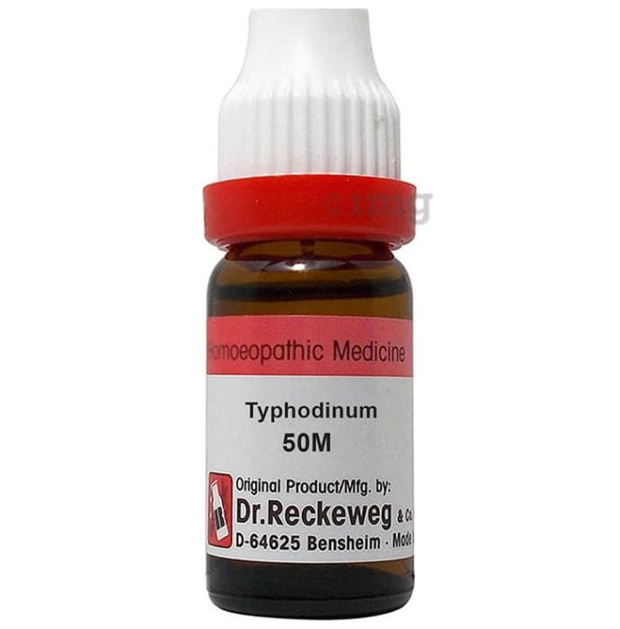 Dr. Reckeweg Typhodinum Dilution 50M CH