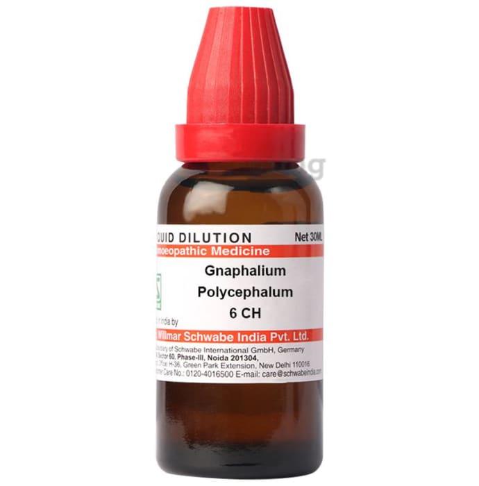 Dr Willmar Schwabe India Gnaphalium Polycephalum Dilution 6 CH