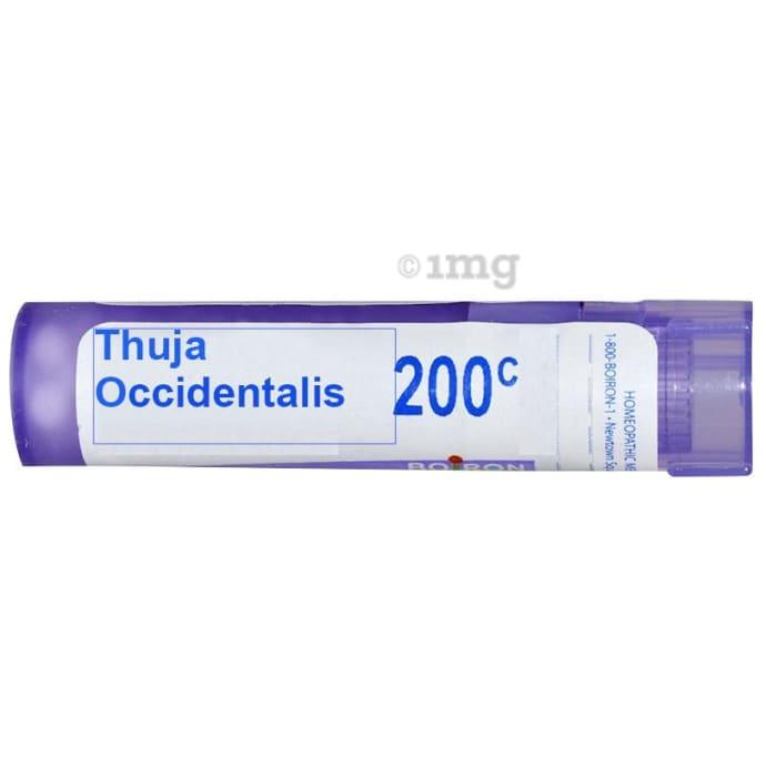 Boiron Thuja Occidentalis Single Dose Approx 200 Microgranules 200 CH
