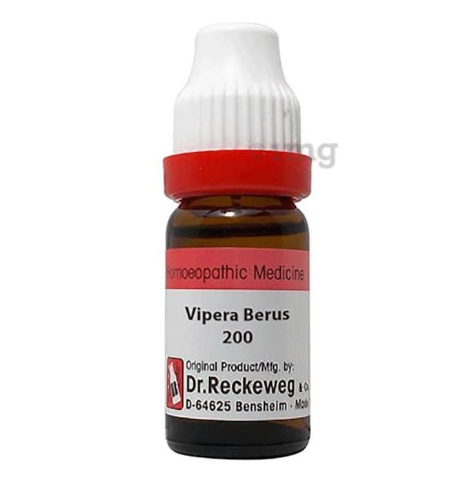 Bjain Vipera Berus Dilution 12 CH