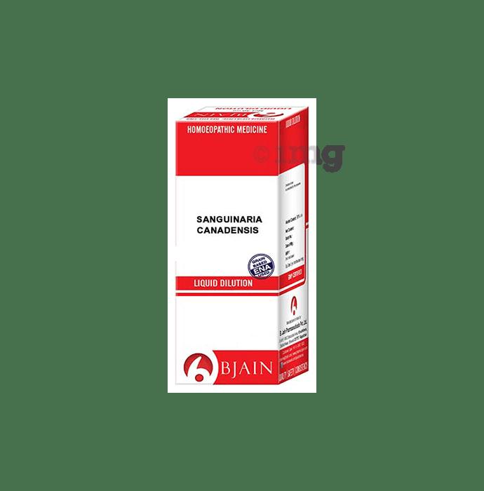 Bjain Sanguinaria Canadensis Dilution 12 CH