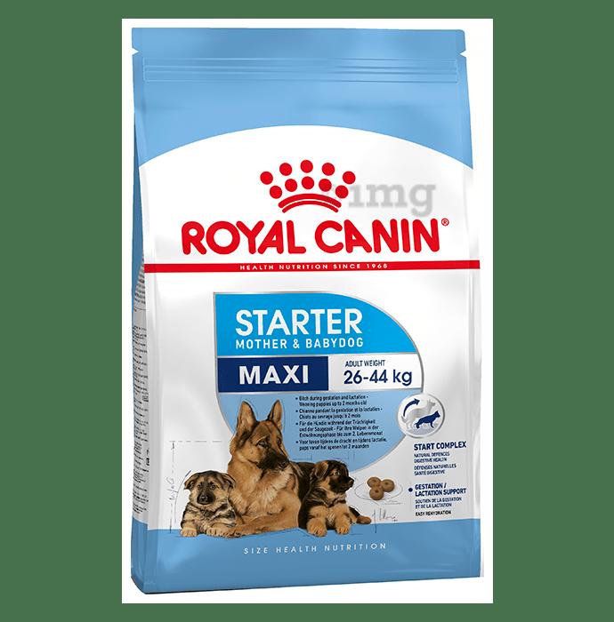 Royal Canin Maxi Dog Pet Food Starter
