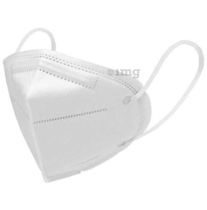 Dominion Care White N95 Mask