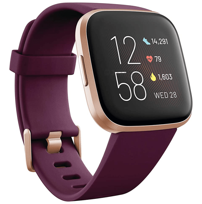 Fitbit Versa 2 Smart Watch Bordeaux-Copper Rose