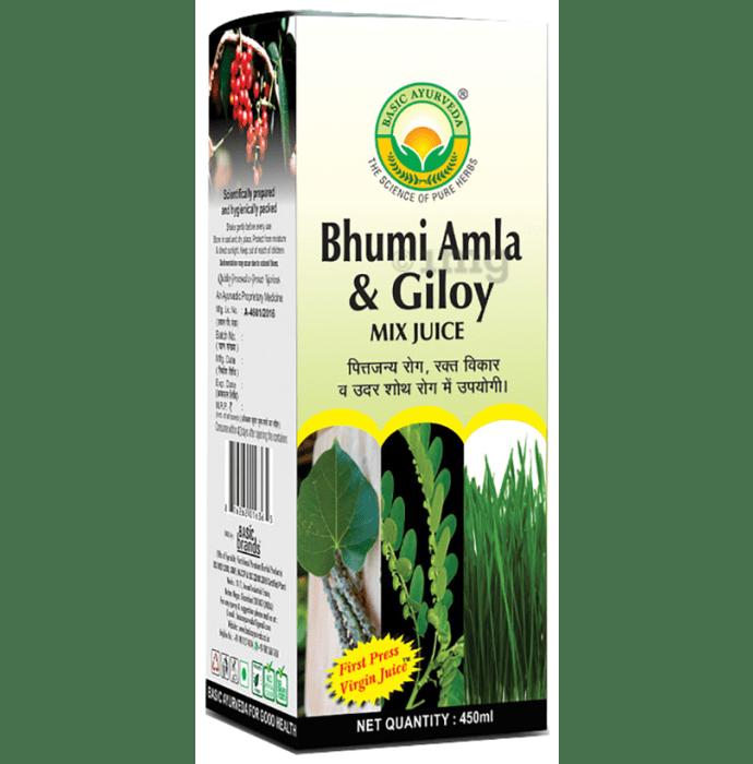 Basic Ayurveda Bhumi Amla & Giloy Mix Juice