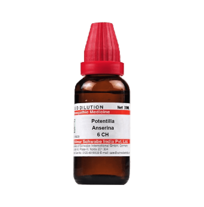 Dr Willmar Schwabe India Potentilla Anserina Dilution 6 CH