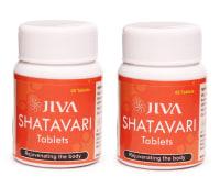 Jiva Shatavari Tablet Pack of 2