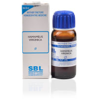 SBL Hamamelis Virginica Mother Tincture Q