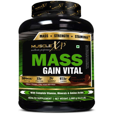 MuscleXP Mass Gain Vital   Powder Dark Chocolate