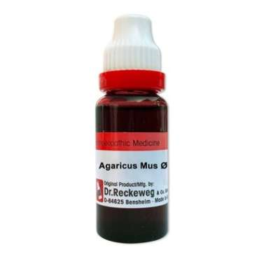 DR. RECKEWEG AGARICUS MUS MOTHER TINCTURE Q