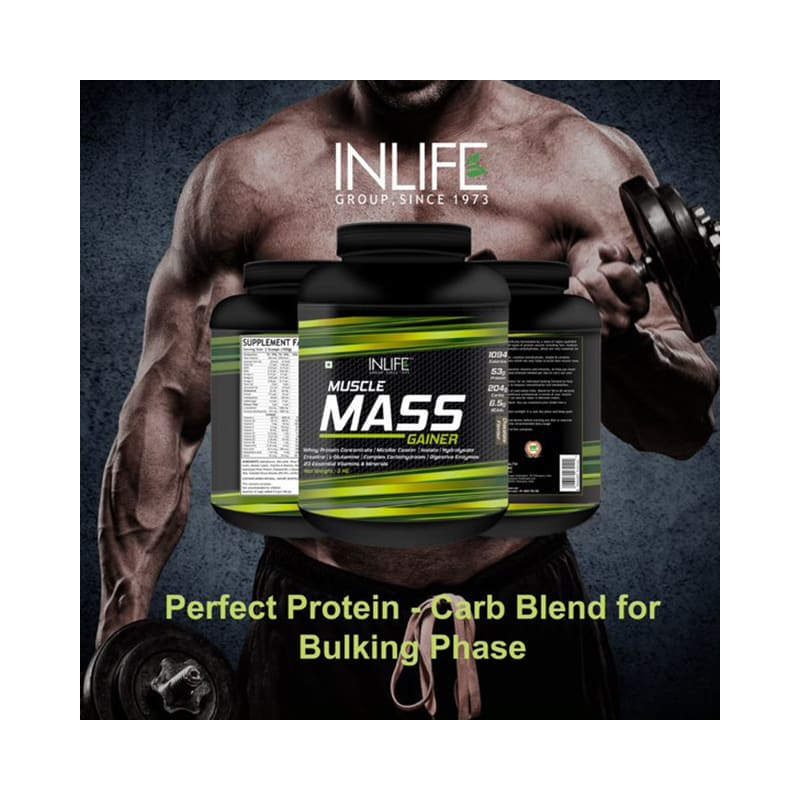 e367a60e0ec Inlife muscle mass gainer protein powder with whey protein chocolate  buy 3  kg powder at best price in india