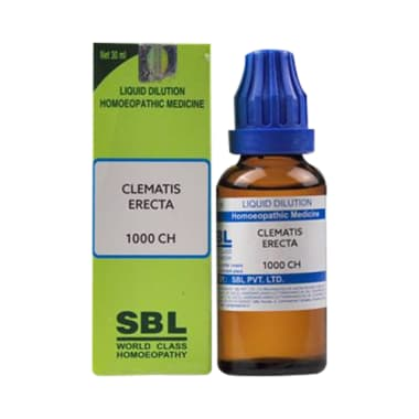 SBL Clematis Erecta Dilution 1000 CH