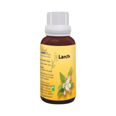 Bio India Bach Flower Larch