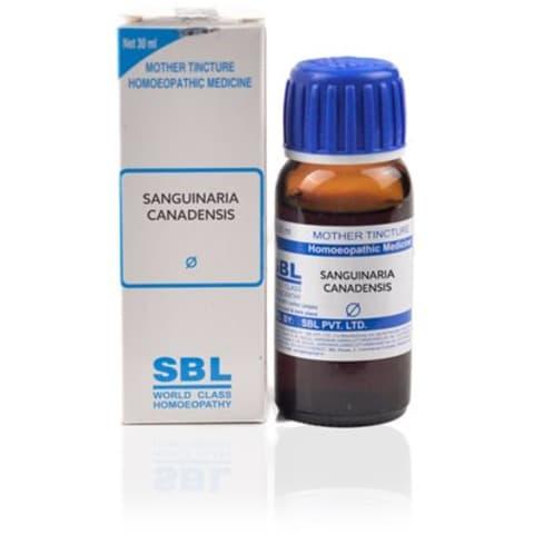 SBL Sanguinaria Canadensis Mother Tincture Q