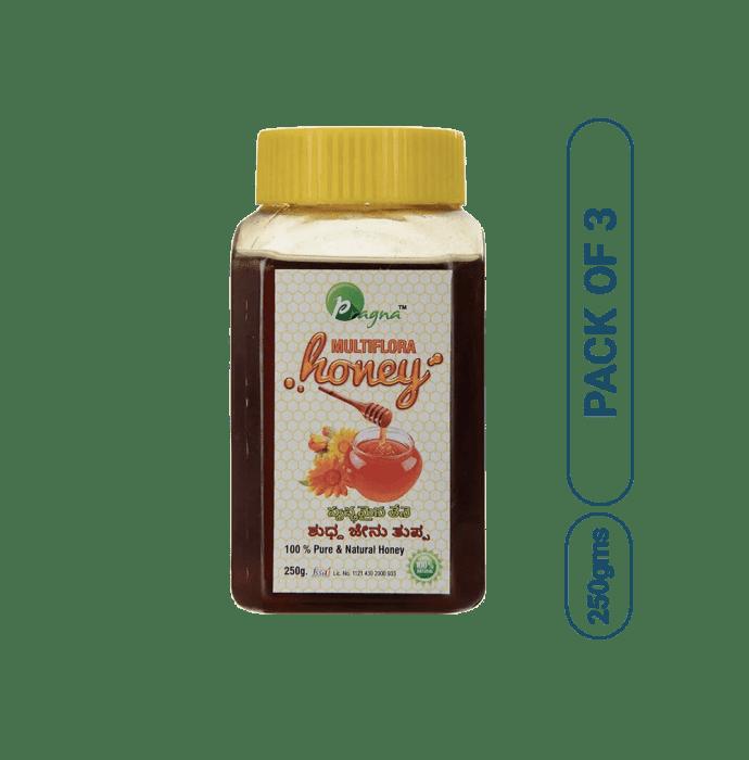Pragna Multiflora Pure & Natural Honey Pack of 3