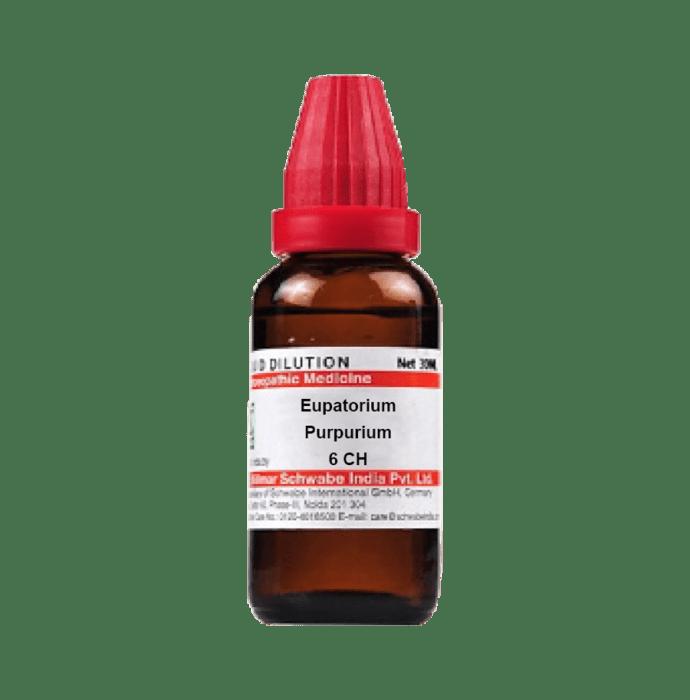 Dr Willmar Schwabe India Eupatorium Purpurium Dilution 6 CH
