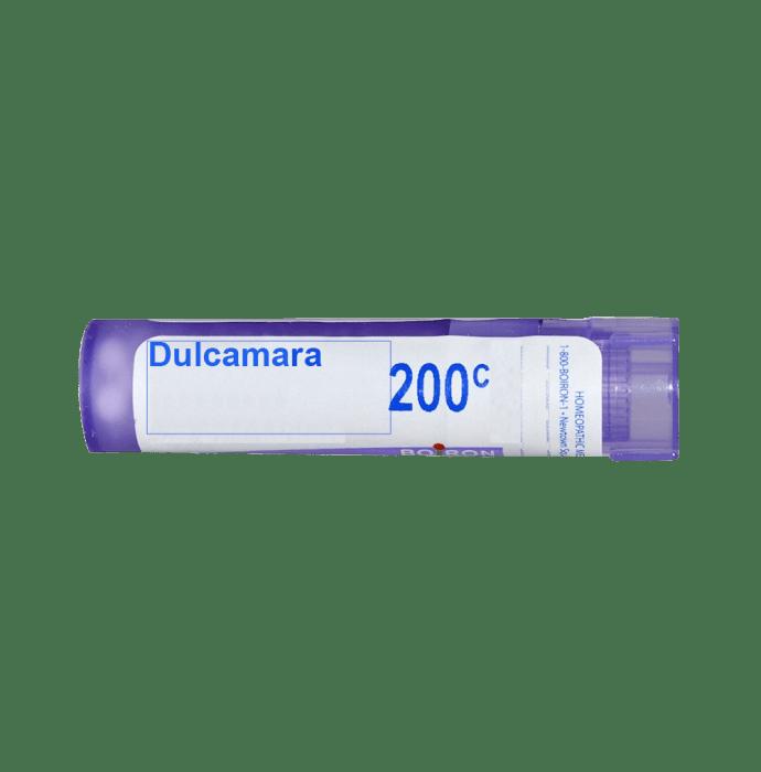 Boiron Dulcamara Multi Dose Approx 80 Pellets 200 CH