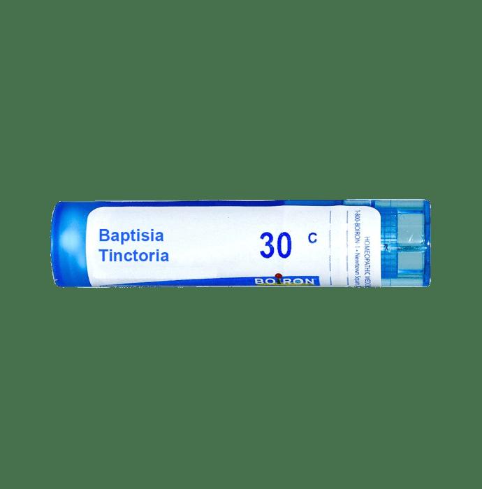 Boiron Baptisia Tinctoria Single Dose Approx 200 Microgranules 30 CH