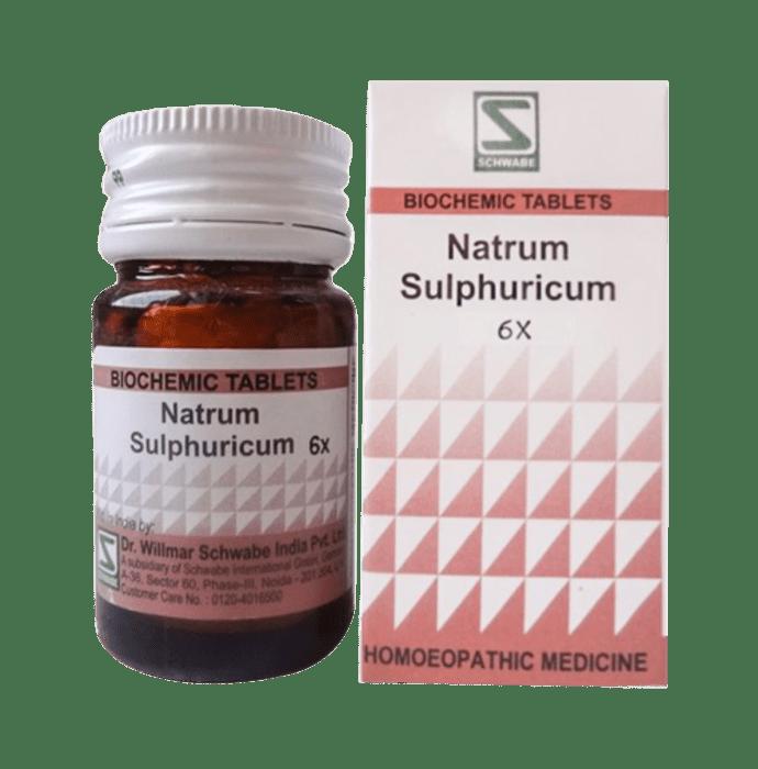 Dr Willmar Schwabe India Natrum Sulphuricum Biochemic Tablet 6X