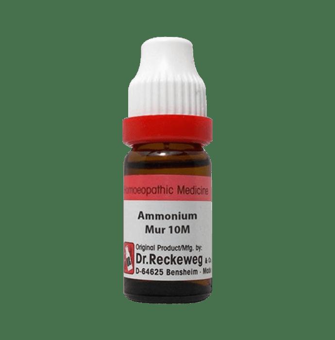 Dr. Reckeweg Ammonium Mur Dilution 10M CH