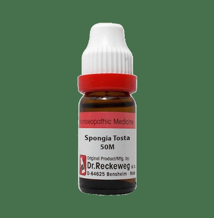 Dr. Reckeweg Spongia Tosta Dilution 50M CH