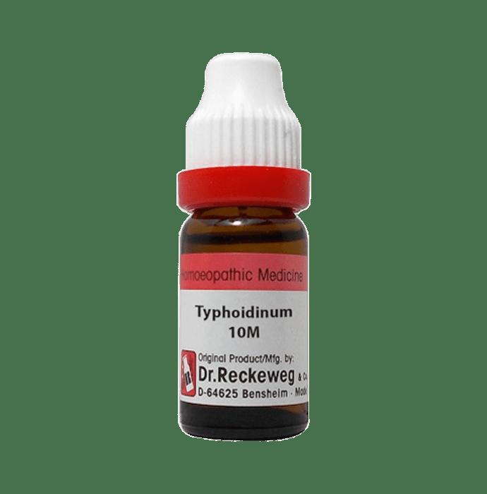 Dr. Reckeweg Typhodinum Dilution 10M CH
