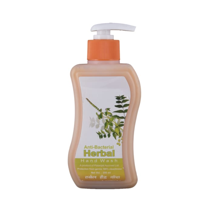 Patanjali Ayurveda Anti-Bacterial Herbal Handwash