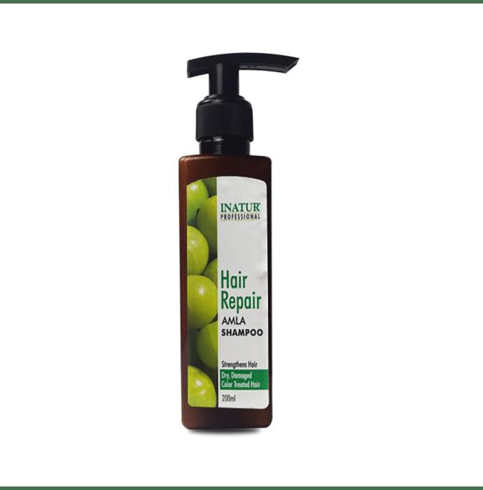 Inatur Shampoo Amla Hair Repair