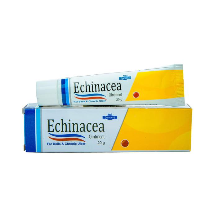 Hapdco Echinacea Ointment