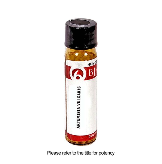 Bjain Artemisia Vulgaris Globules 6 CH