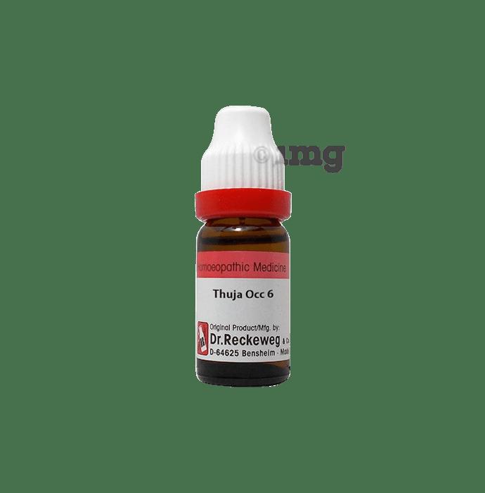 Dr. Reckeweg Thuja Occ Dilution 6 CH