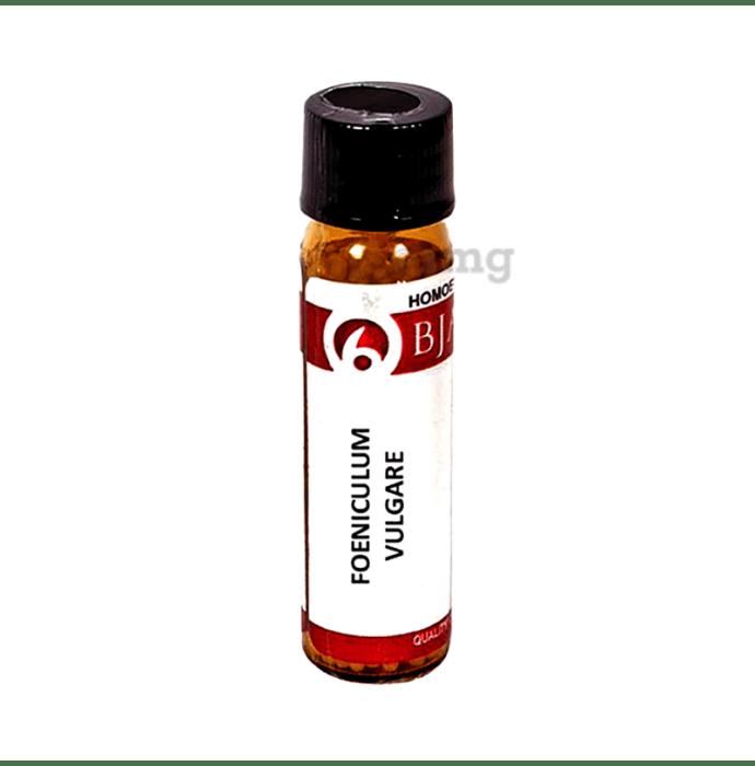 Bjain Foeniculum Vulgare Globules 12 CH