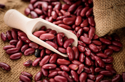 Kidney Beans Benefits Precautions And Dosage 1mg