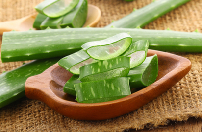 Aloe vera : Benefits, Precautions and Dosage | 1mg