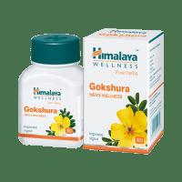 Himalaya Wellness Pure Herbs Gokshura Men's Wellness Tablet