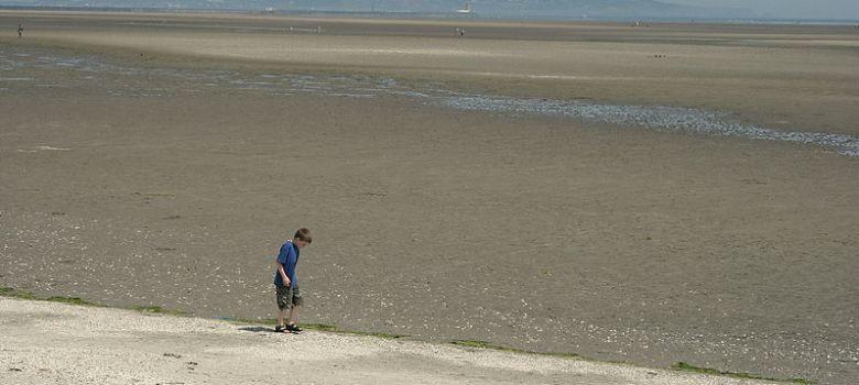 Sandymount Strand image