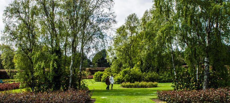 St Anne's Park image
