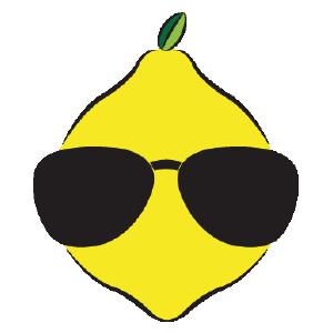 Dude Lemon - Web Development