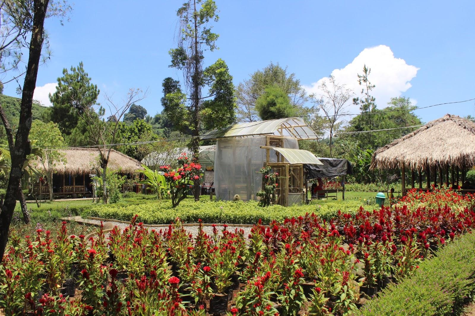 Jendela Alam Lembang