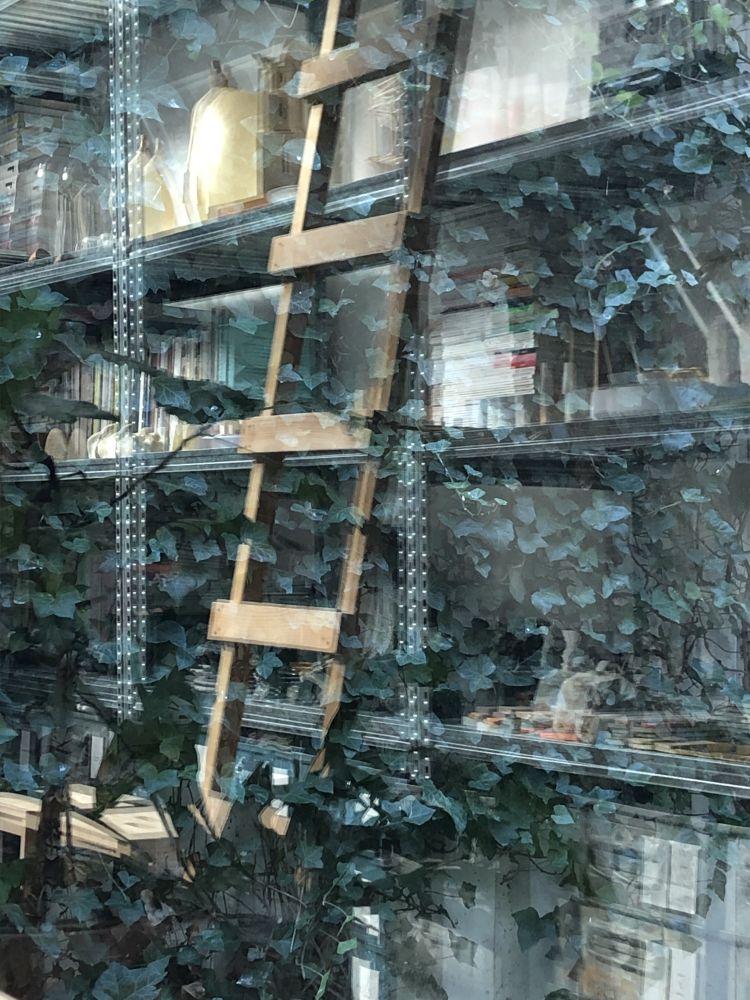 Dalla finestra di Studio Formafantasma